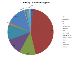 Primary Disability Categories