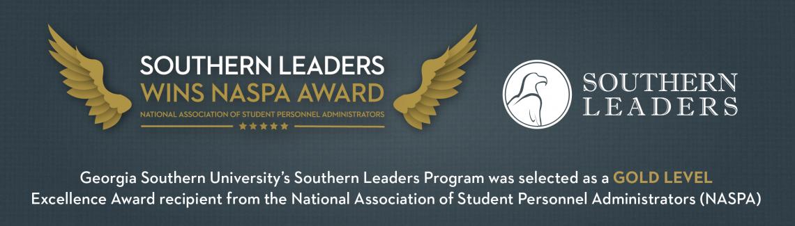Naspa Award Website Banner